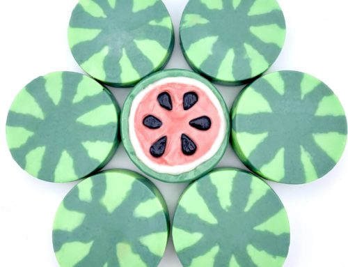 Salty Watermelon Soleseife Soap by Robyn French Smith